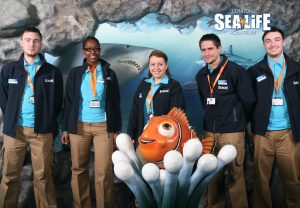 Sea_life_Aquarium_uniforms_TMD